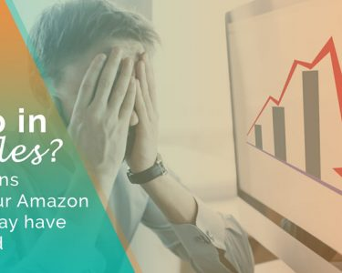 Why Your Amazon Sales May Have Dropped